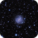 M83,                                Olga W. Ismael