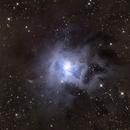 NGC7023 - The Iris Nebula,                                pmumbower