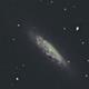 NGC 6503,                                David Newbury