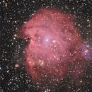 NGC 2174 Monkey Head Nebula,                                Gene