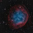 Sh2-290 (Abell 31),                                KuriousGeorge