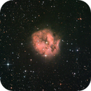 IC 5146 Cocoon Nebula,                                Luís Ramalho