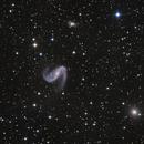 The Meathook Galaxy, NGC 2442,                                Geoff