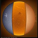 Sun in slices (Cak, h-alpha, WL),                                Łukasz Sujka