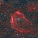 Sh2-129 Flying Bat Nebula,                                Carastro