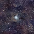 NGC7023_Iris nebula,                                Kilsong Kang