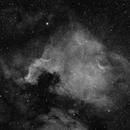 NGC 7000 Ha,                                Vega