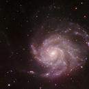 Messier 101,                                Adrie Suijkerbuijk