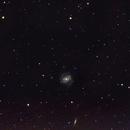 Blow Dryer Galaxy M100,                                Torben