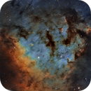 NGC 7822,                                Mathieu Guinot