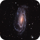 NGC 5033 in Canes Venatici,                                Greg Nelson