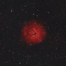 SH2-170 - The Little Rosette Nebula,                                Sektor