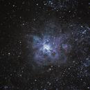 NGC2070 - Tarantula Nebula,                                Marcelo Alves