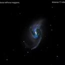 ngc3359 galassia nell'orsa maggiore                                       distanza 77 miloni   A.L.,                                Carlo Colombo