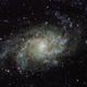 M33 - Triangulum Galaxy,                                Bob Stewart