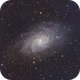 M33 The Triangulum Galaxy,                                Tim Polk