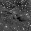 Lynds Catalog of Dark Nebulae - 1152,                                Nippo81