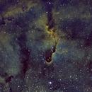 IC 1396, Elephant Trunk,                                Jeff Bennett