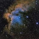Wizard Nebula,                                Alf Jacob Nilsen