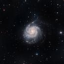 The Pinwheel Galaxy - Messier 101,                                Paul Hutchinson