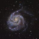 M101 Pinwheel Galaxy,                                Debra Ceravolo