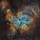 NGC3372 Carina Nebula,                                Jonathan Durand