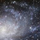 History lesson, M33 in late summer, a first for 2020,                                Przemysław Majewski & teleskopy.pl