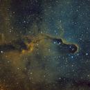 IC1396,                                Mathias Radl