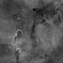IC 1396 Elephant's Trunk Nebula,                                hughsie