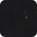 M81 & M82 Widefield,                                ThomasR