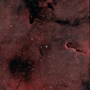 IC 1396A (Elephant Trunk Nebula),                                Klaus Haevecker