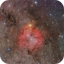 The IC1396 and its surroundings in the Cepheus constellation,                                Csilla Tepliczky