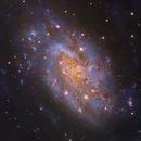 NGC 2403 RGB - Liverpool Telescope :-),                                Daniel Nobre