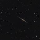 The Needle Galaxy (NGC 4565),                                Kelvinmack