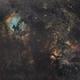 Cygnus in SHO,  Sigma Art 50 à f/2  /  ATIK ONE  /  AZEQ6,                                Pulsar59