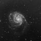 Galaxie du Moulinet -  M101,                                BLANCHARD Jordan