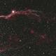 NGC 6960 The Veil Nebula,                                Trevor Gunderson