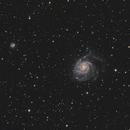 M101 with NGC 5474 and NGC5422,                                Nick LaPlaca
