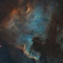 North American Nebula SHO,                                Robert Leach