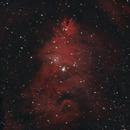 NGC 2264 Christmas Tree Cluster 20210302 20640s Ha-OIII 01.9.6,                                Allan Alaoui