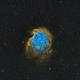 NGC 2174 Monkey Head Nebula,                                Stan Smith