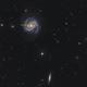 SN 2019ehk in Messier 100,                                Lionel Majzik