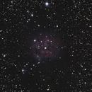 IC5146 Cocoon Nebula,                                Matthias Domke