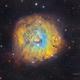 Sh2-170 Little Rosette Nebula details in SHOrgb,                                Jose Carballada