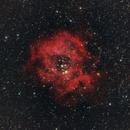 Nebulosa Roseta-  rosette neb,                                MARCELO D. MARCOS