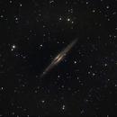 Galaxy NGC 891,                                Steven Bellavia