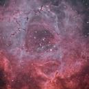 Rosette nebula (HyperStar С11 v.4 + APO WO 98FLT),                                StarDiver