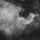 NGC7000 Ha under city sky,                                Byoungjun Jeong
