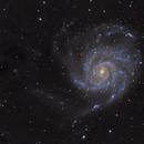 The Pinwheel Galaxy - M101,                                Josh Woodward