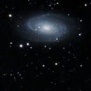 M81 galaxy group,                                nhw512